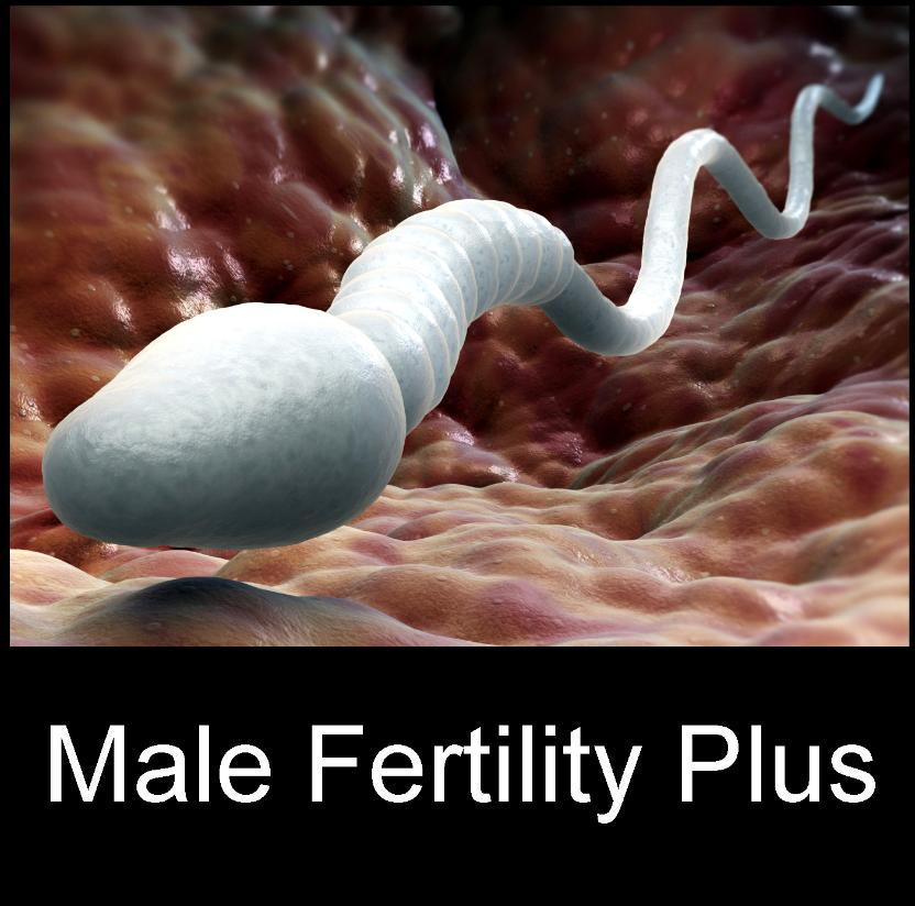sperm dating How to increase sperm count naturally low sperm count can affect your ability to conceive, and is often caused by factors such as poor nutrition, lack of exercise, obesity, lack of sleep, and daily exposure to toxic chemicals.