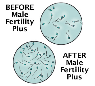 The herbs for sperm motility Good!