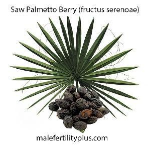 Saw Palmetto Berry Restorative sexual tonic for men and women