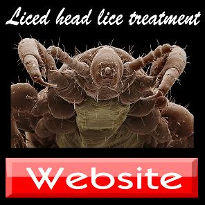 herbal_head_lice_treatment